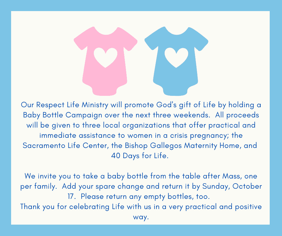Don't forget your baby bottles this week!